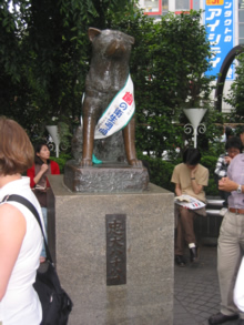 The Loyal Hachiko