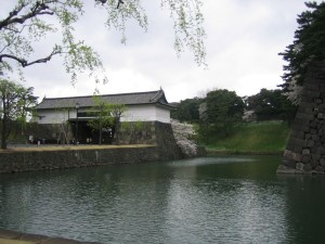 imperial-palace-cherry-blossoms
